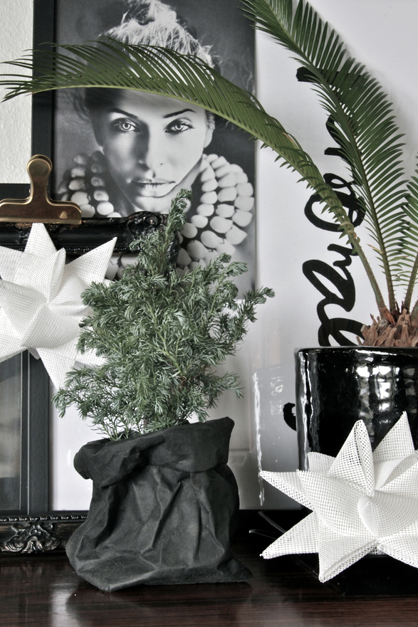 Christmas photo & styling: Heidi Hallingstad