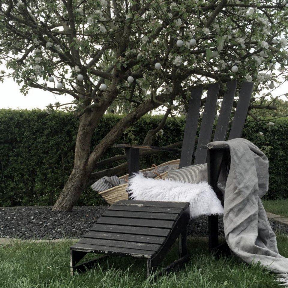 The joy of a blooming apple tree // heidihallingstad.com