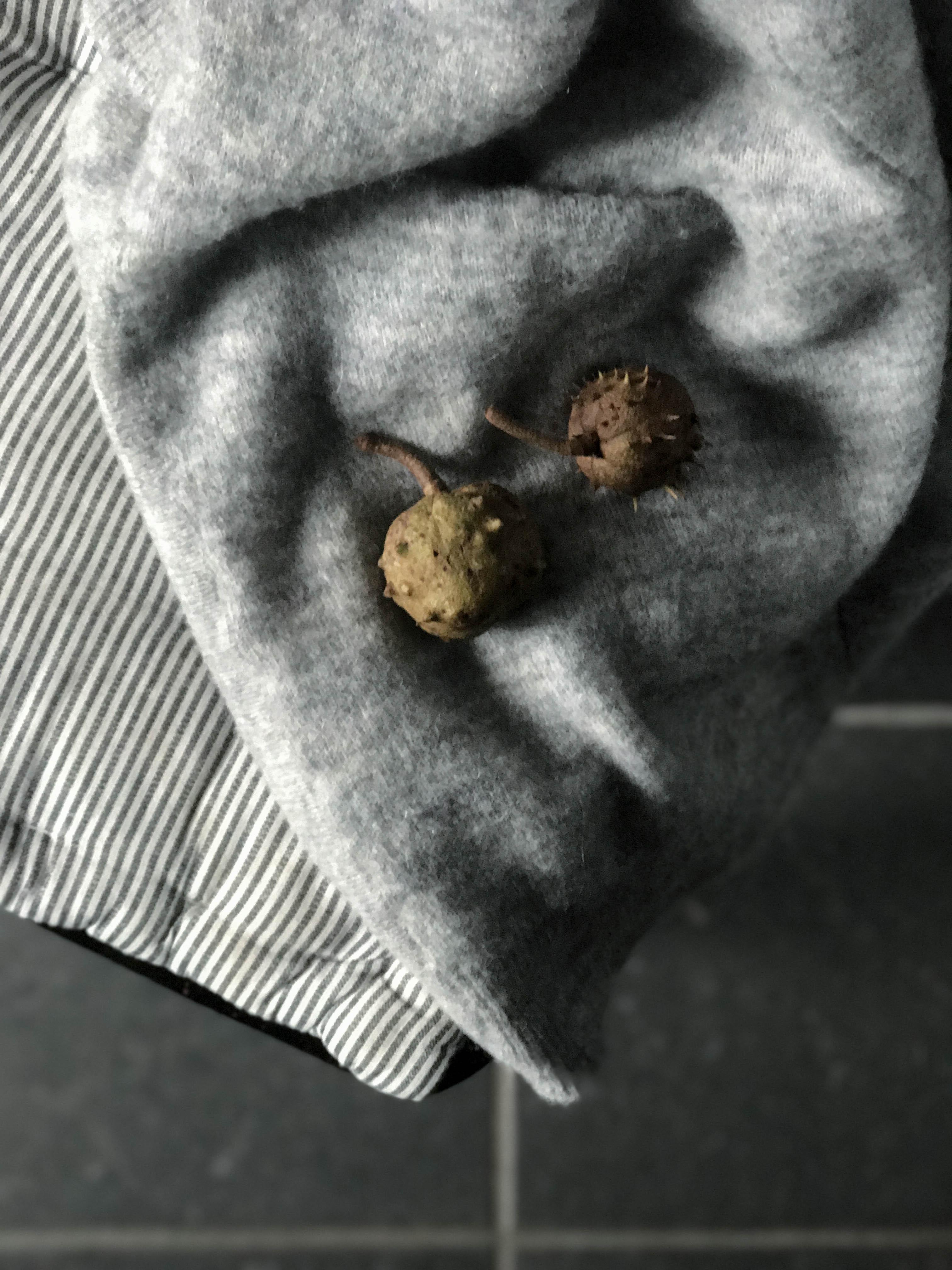 fall wardrobe // heidihallingstad.com